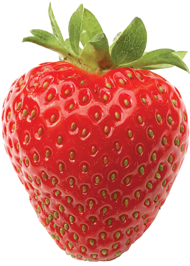 strawberry7 - personalised ict and IT support for primary schools - hounslow, hampshire, surrey, london